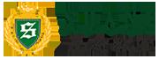 Shane HK Logo